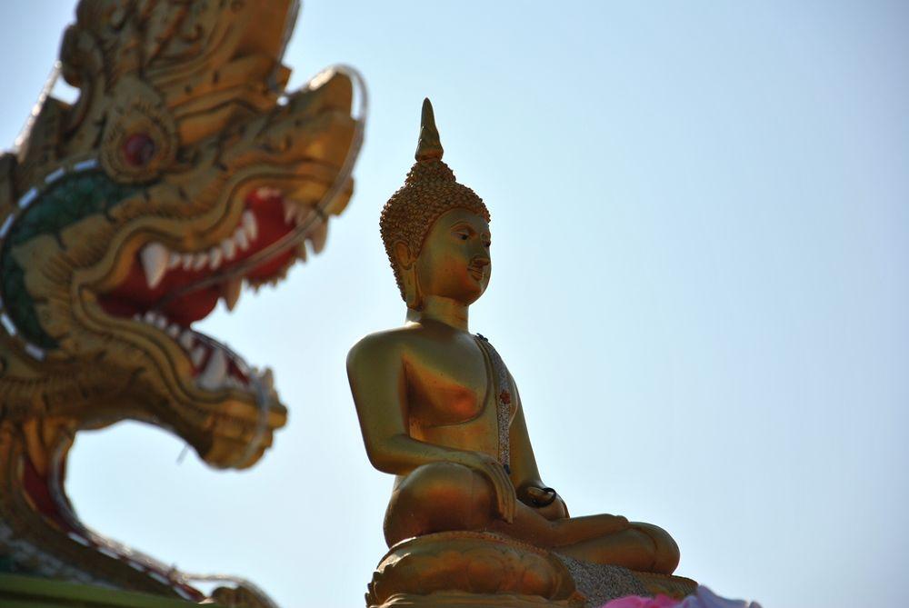 Photo in Random #cw wongphakdee