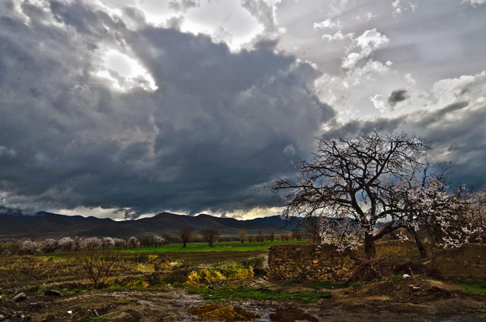 Untitled_HDR02 by ahmadreza nikazar