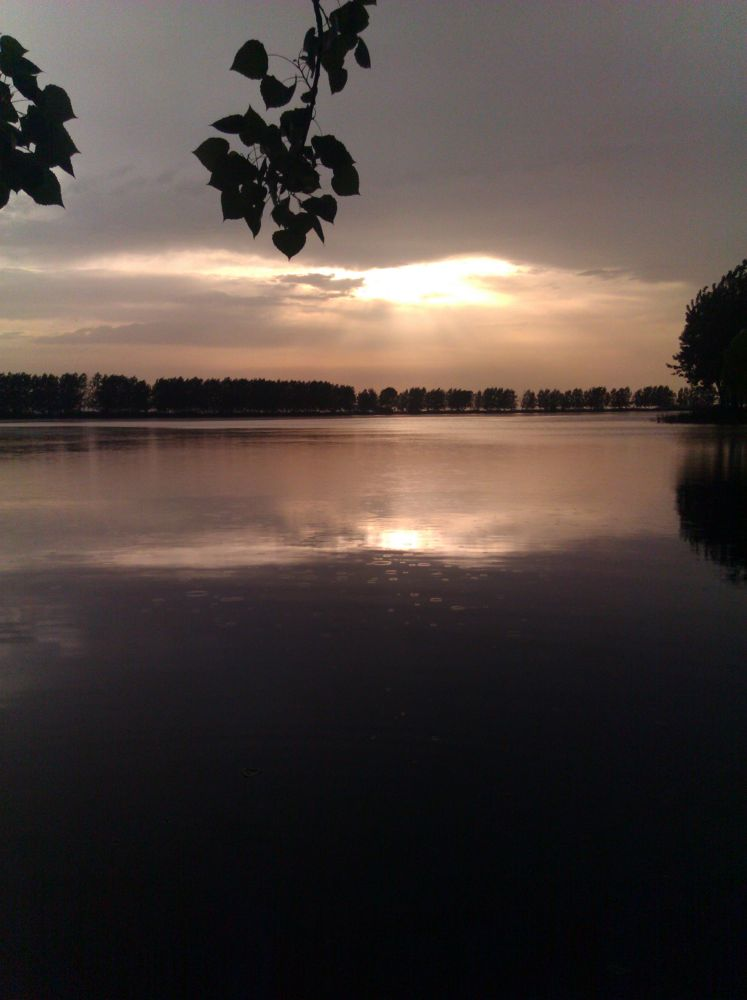 Photo in Random #sunset #lake #rain #sun #tree #sea