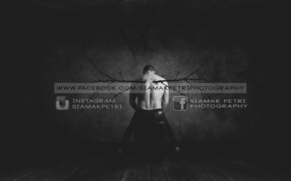 My cover photo by Siamak Petri