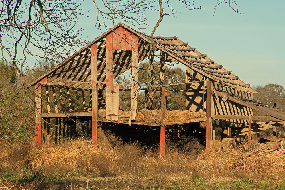 Photo in Architecture #abandoned barn #abandoned #barn