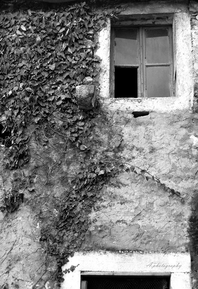 Photo in Black and White #black #white #old #house #window #croatia #nikon #2013