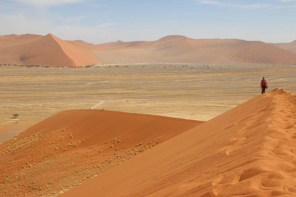 Dune 45, Namibia. by Daniël Ost
