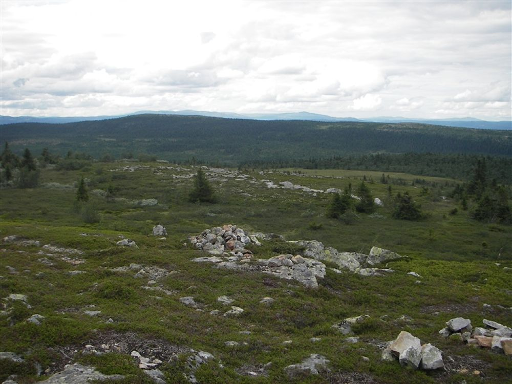 IMGP5358 by andreasivarsson