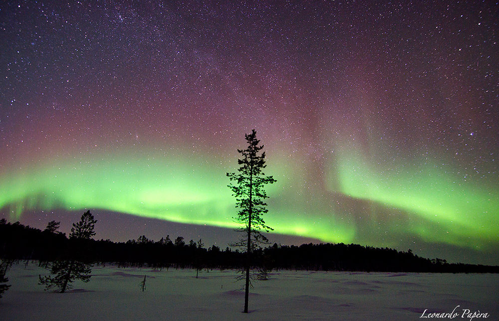 Photo in Landscape #aurora #northern lights #aurora borealis #finland #lapland #lake #nightshot #nightscapes #night #sky #milky way