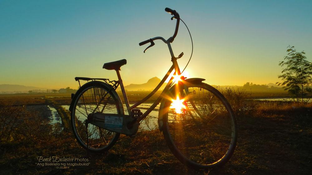 Ang Bisekleta Ng Magbubukid (The Bicycle of a Farmer) by Bench Bryan