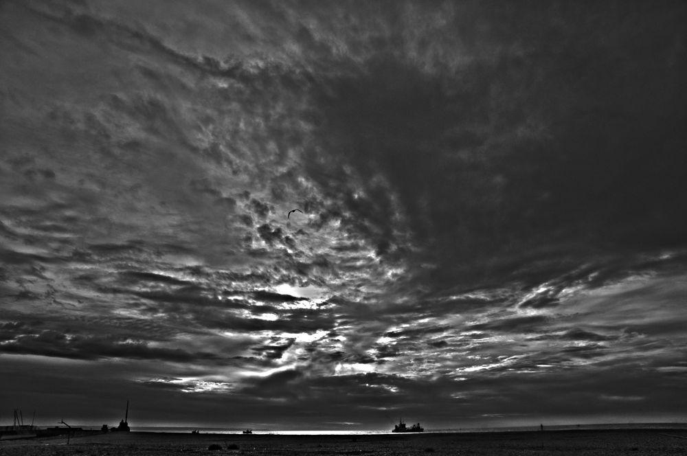 noir by photoloic76
