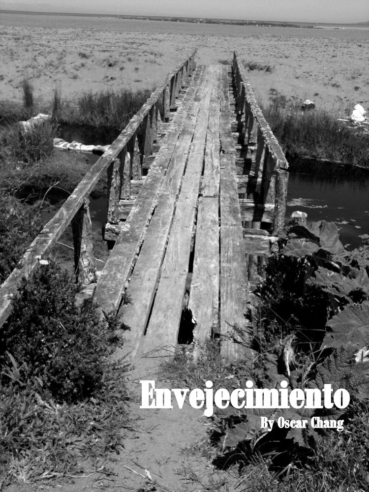 Photo in Black and White #chile #chiloé #queilen #isla tranqui #turismo rural