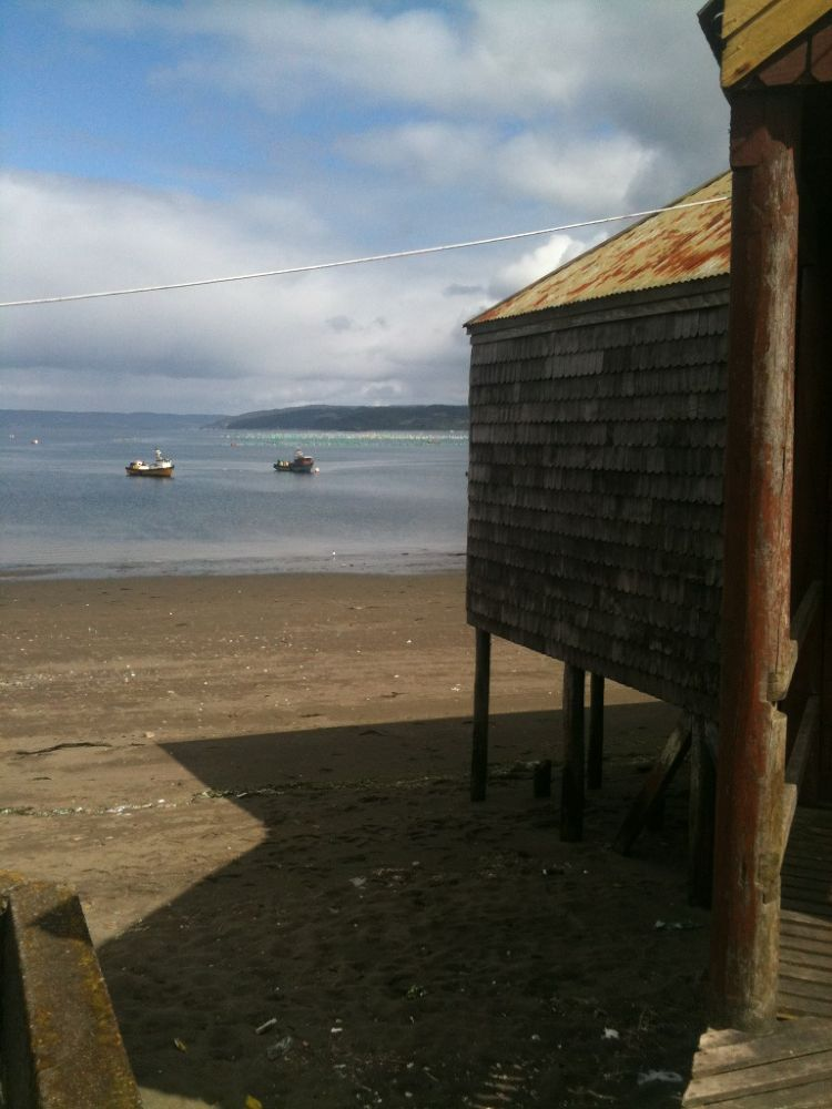 Photo in Rural #chile #chiloé #queilen #turismo rural