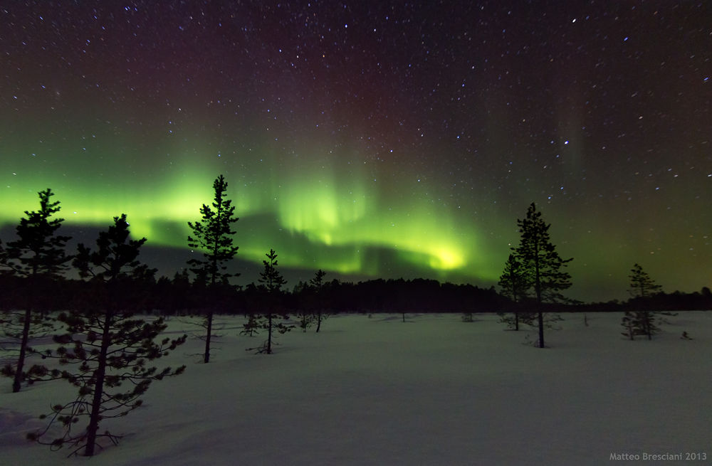 Photo in Random #northenlights #aurora #borealis #boreale #north #northen #light #lights #sky #night #lake #ice #frozen #snow #snowmobile #inari #finland #green #path #stars #beautiful #tree #lago #neve #ghiacchio #stelle #verde #finlandia