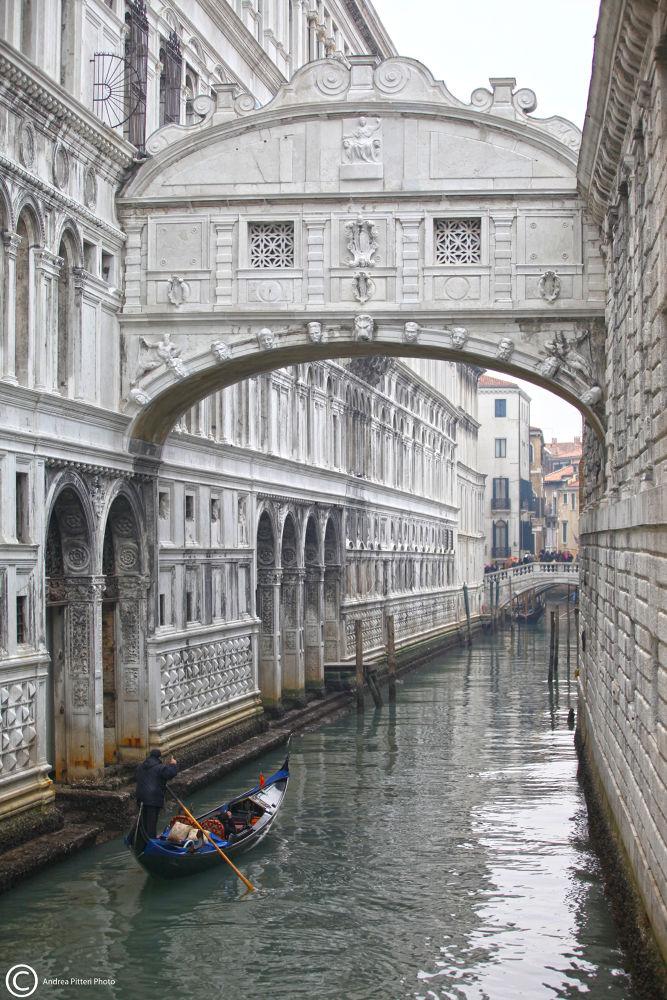 Photo in Cityscape #venezia #venice #ponte #bridge #sospiri #gondola #canale #andreapitteriph