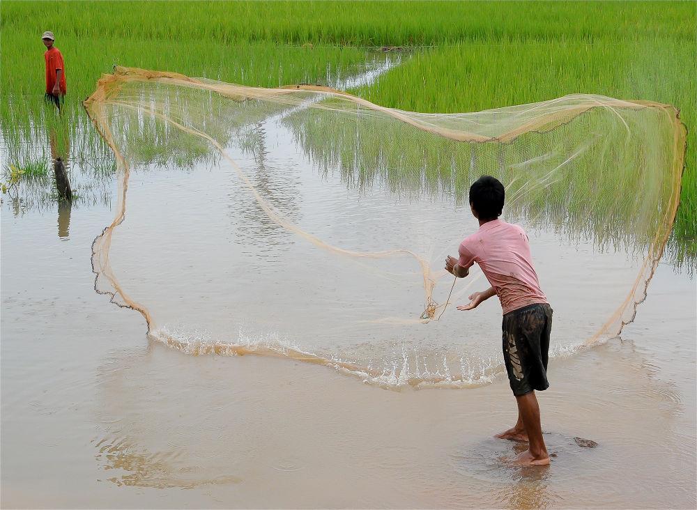 Casting a net by cyourworldmyeyes