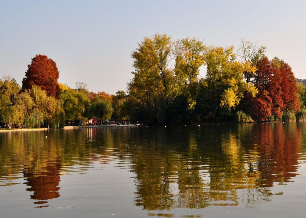 autumn reflection by kalenderbey