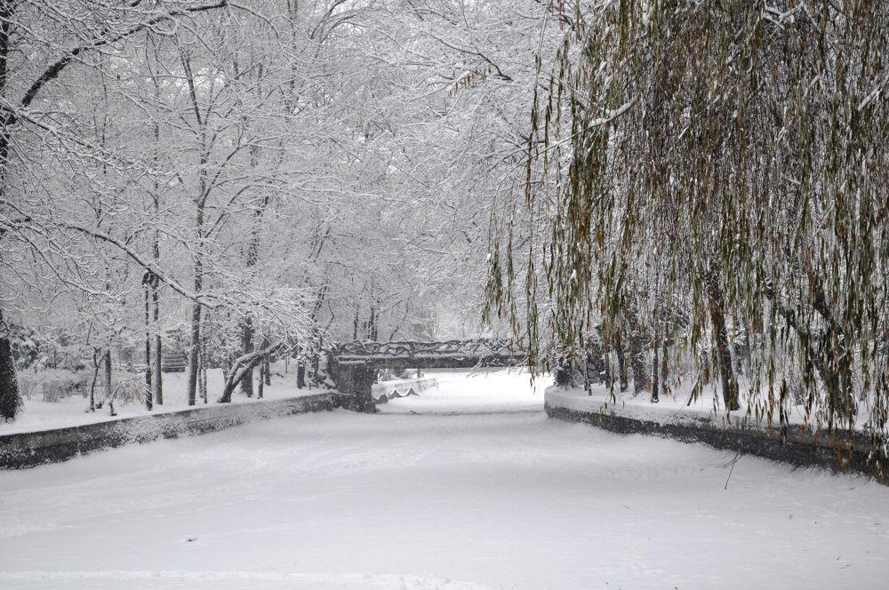 frozen lake by kalenderbey