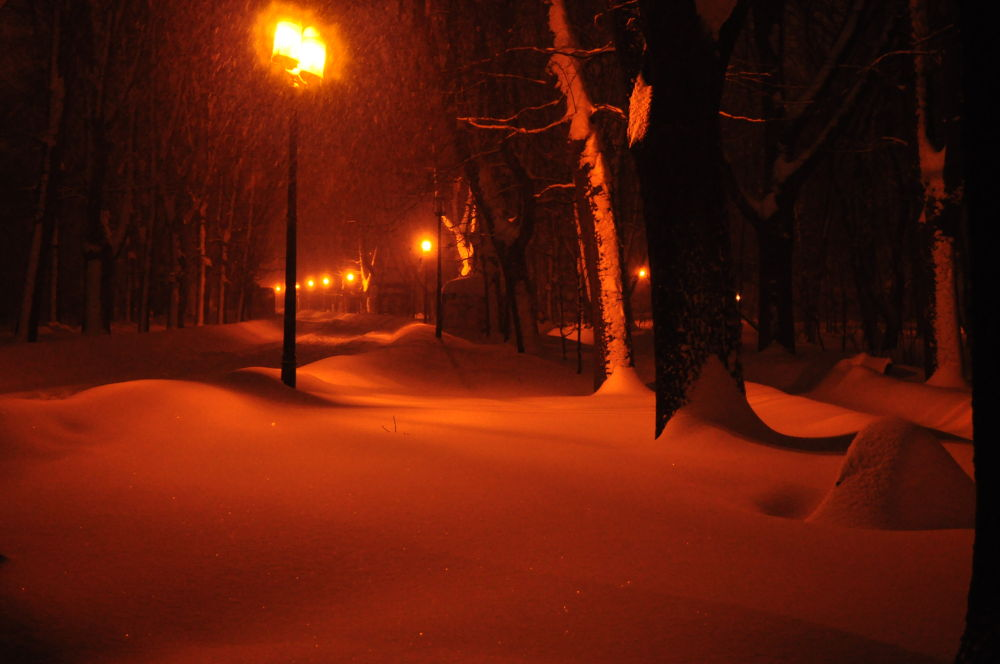 night landscapes with snow by kalenderbey