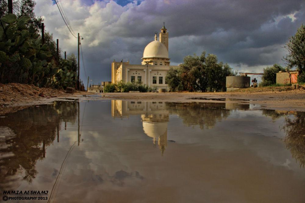 IMG_5788 by hamza ALsħàmí