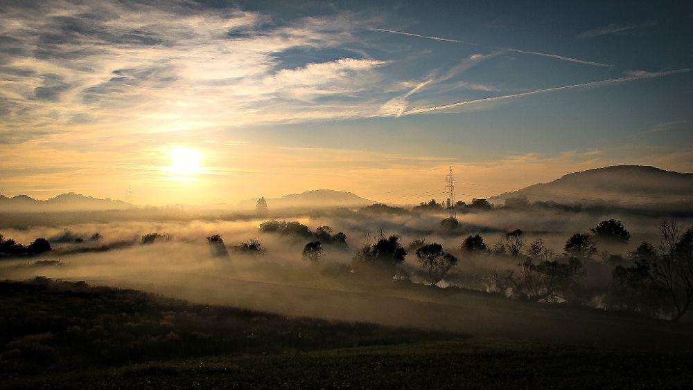 Fog by Luka Vuković