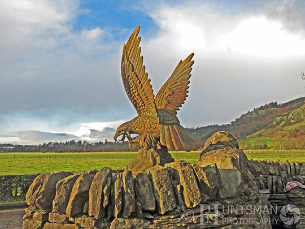 Photo in Architecture #eagle #landscape #farmshop