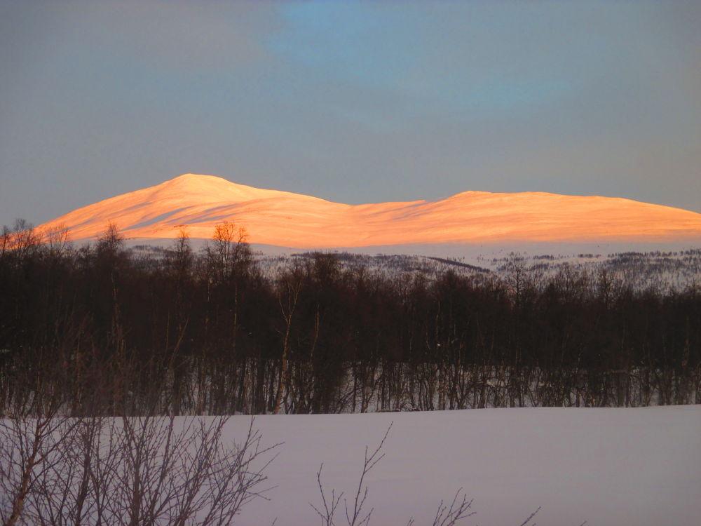 lovely light on the snow by Vivian Pedersen