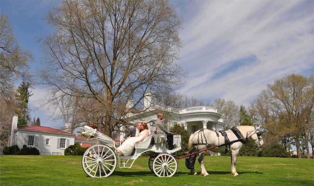 Horse and carriage wedding by Karen Fig Phototechphotos