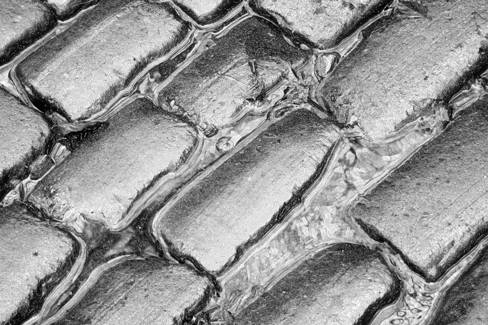 cobbles by tonyk