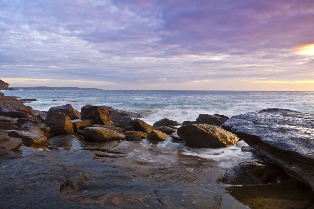 Whale Beach by markanthony
