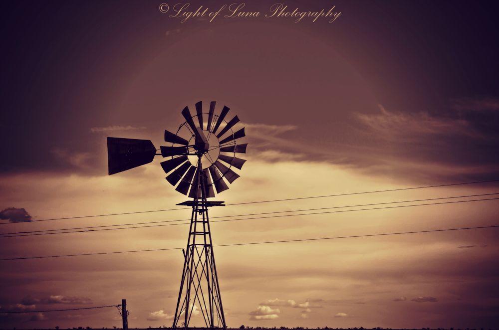 Wild West Windmill by Melissa Calvert