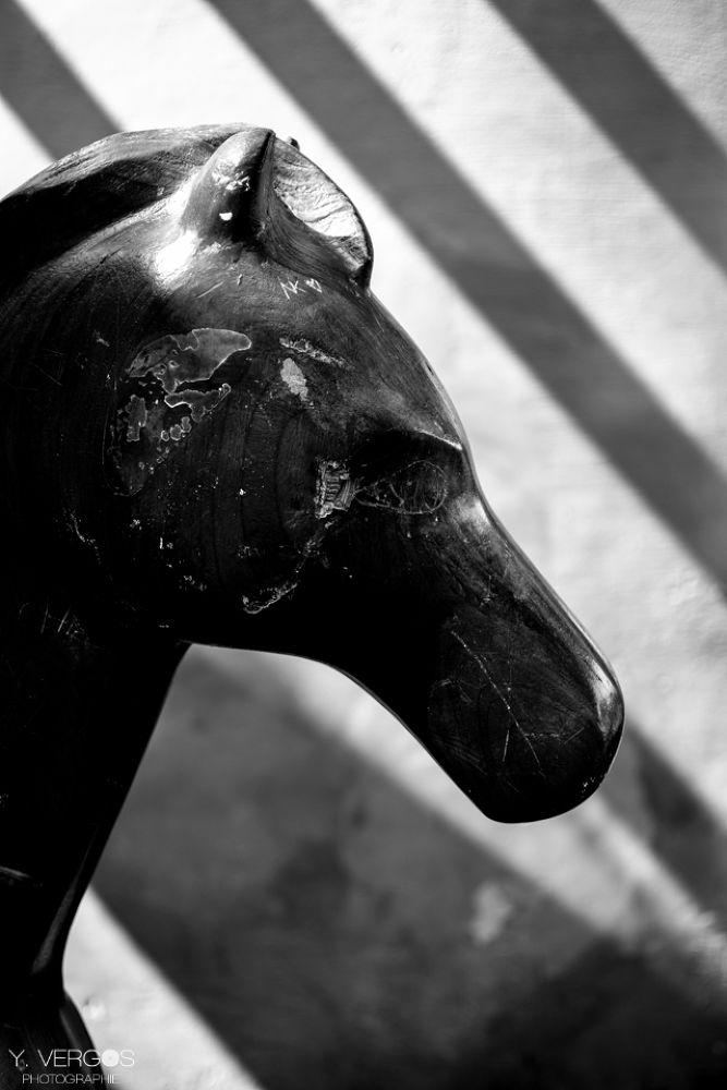 Wooden Horse by Yoann Vergos - Photographe