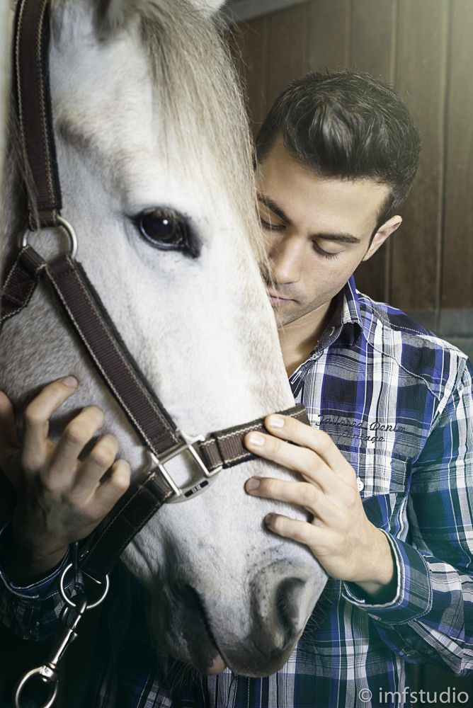 Horse friend by imfstudio