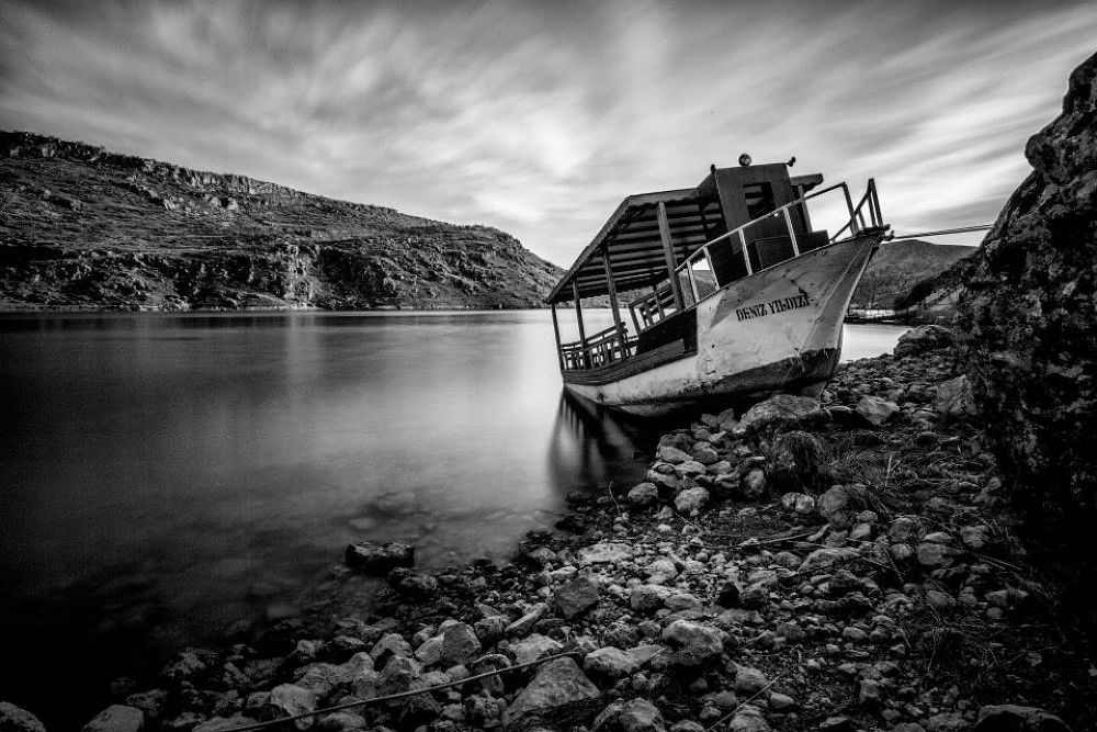 Sea Star by Metin Burak Kınacılar