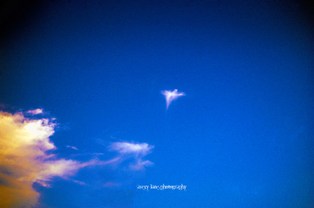 Photo in Abstract #angel #sky #clouds