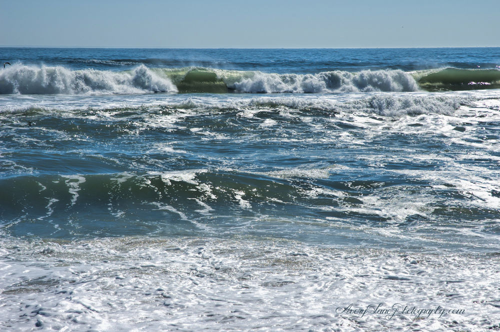 Wind and Water 4  by Lanie Avery