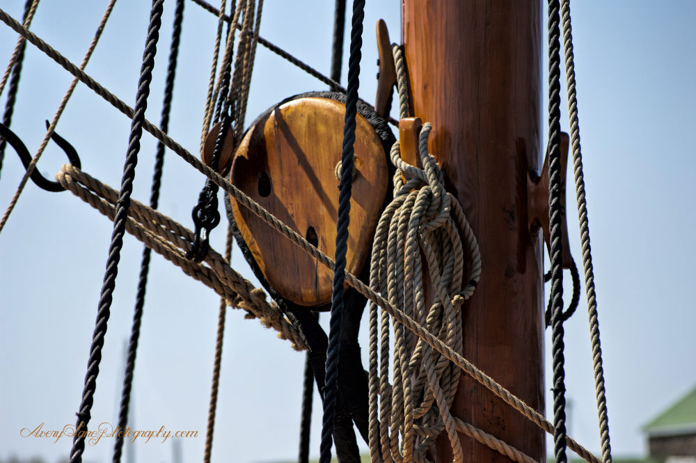 Block and Tackle 2  by Lanie Avery
