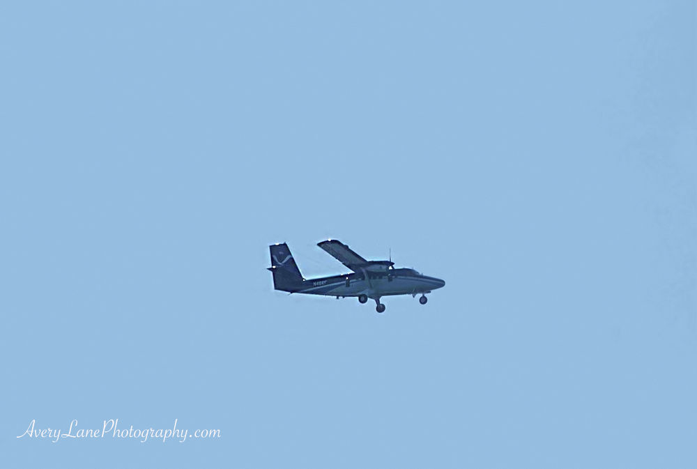 NOAA Plane  by Lanie Avery