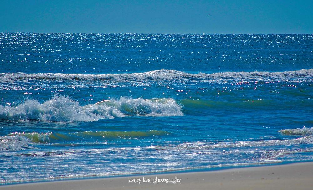 Endless Ocean  by Lanie Avery