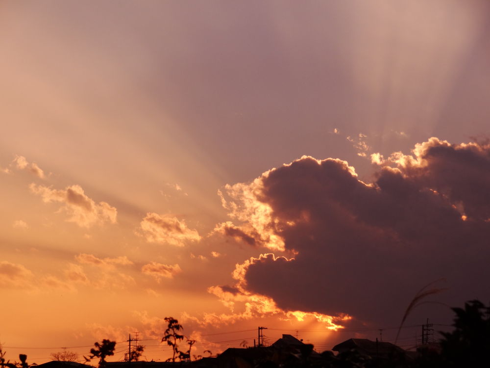 Photo in Nature #sunset #cloud #ray