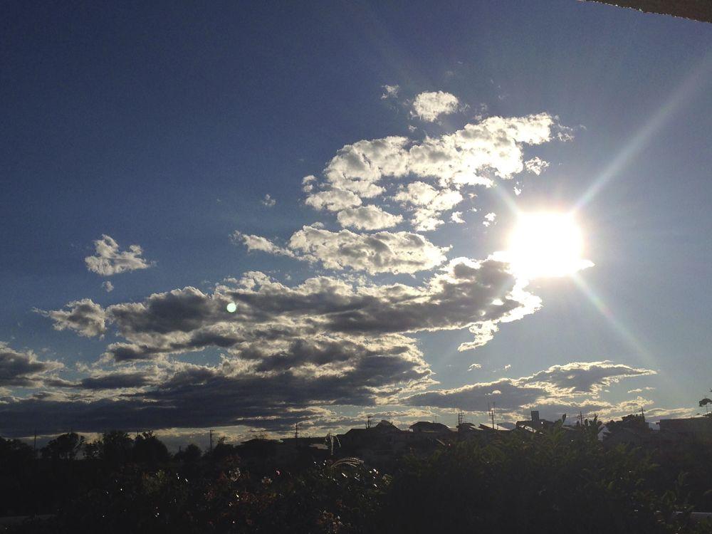 Photo in Nature #sky #sun #cloud #blue #light
