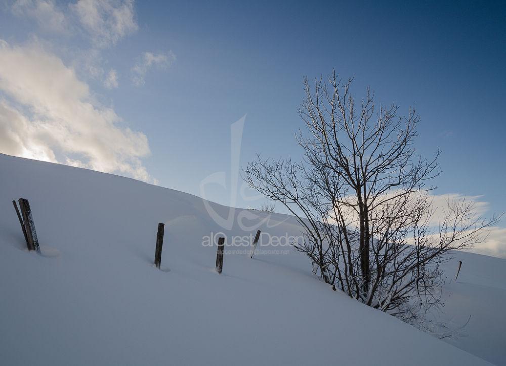 white dune 2 by alOuestDeden