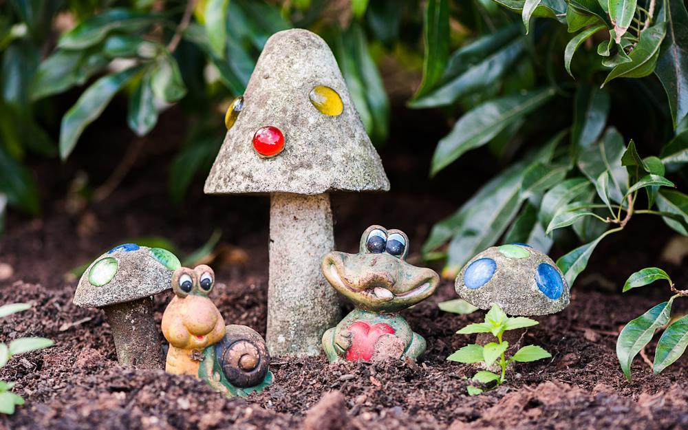 Photo in Still Life #garden #shrooms