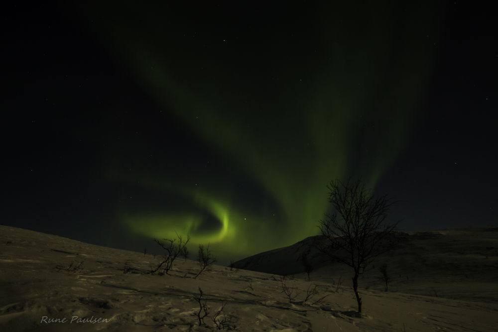 Photo in Landscape #northernlight #alta #finnmark #norway #natur #kold #snow #sky #ice #aurora