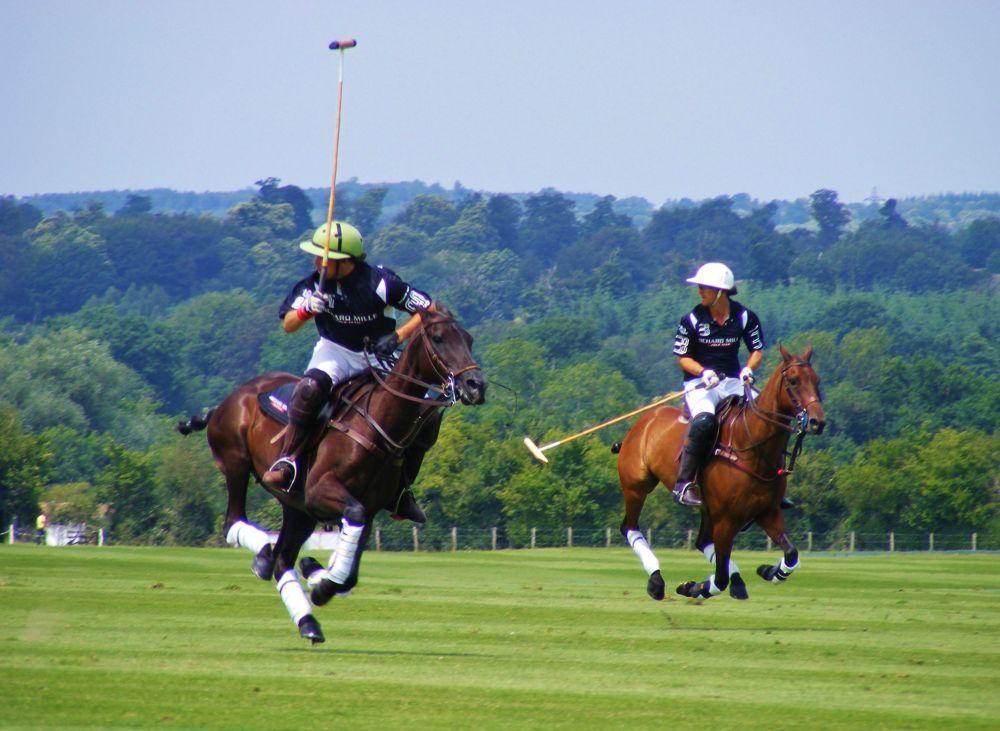 Photo in Sports #polo #horses #cowdray #gold cup #chukka