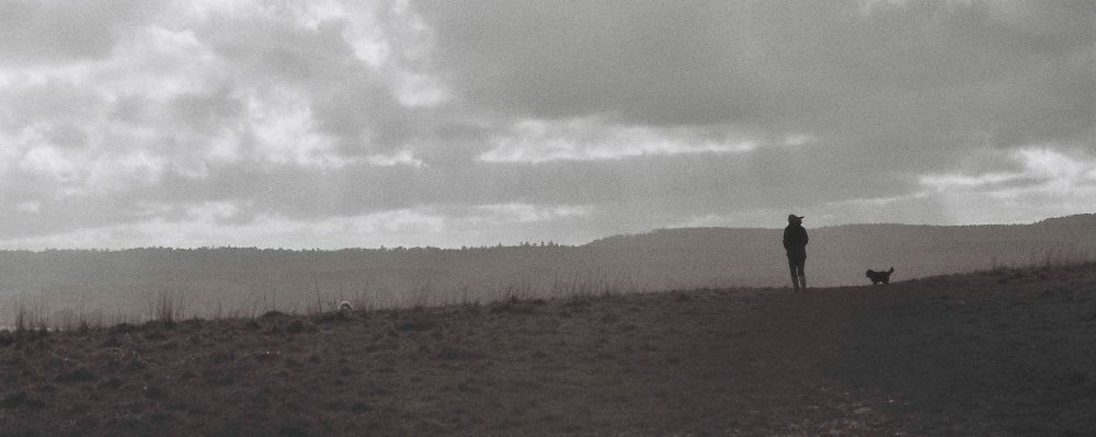 Dog walking by Nigel Rainton