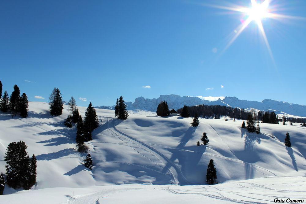 Ortisei - Alpe di Siusi  by Gaia Camero