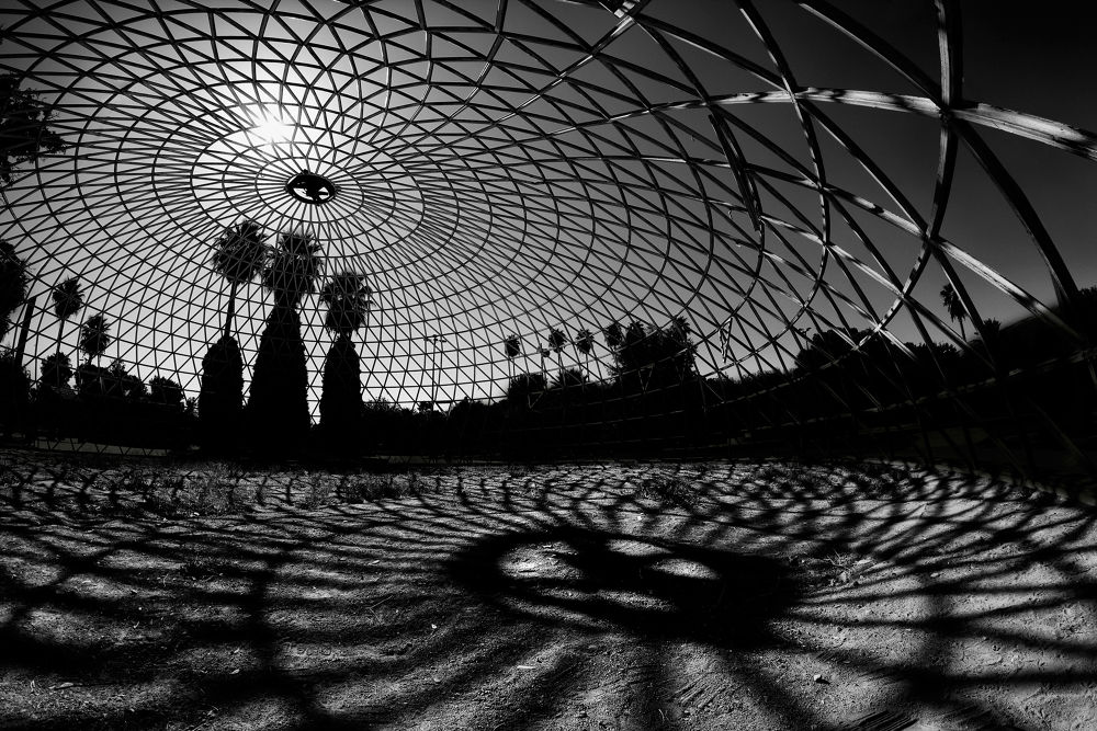 Curvature by Mohammad Amin Abedini