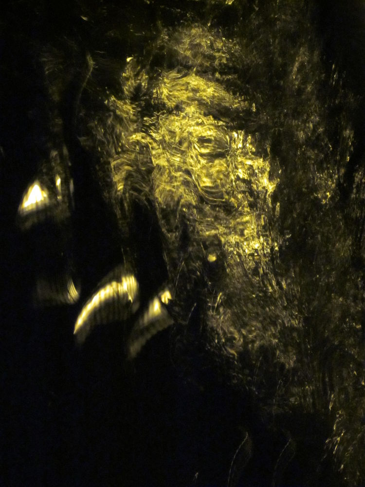 SELF-PORTRAIT OF A FACE SHIFTER (How Many Can You See? Made X YOU? Or ME?)~Snapshot/TroubledWaterAr by Michael Masley