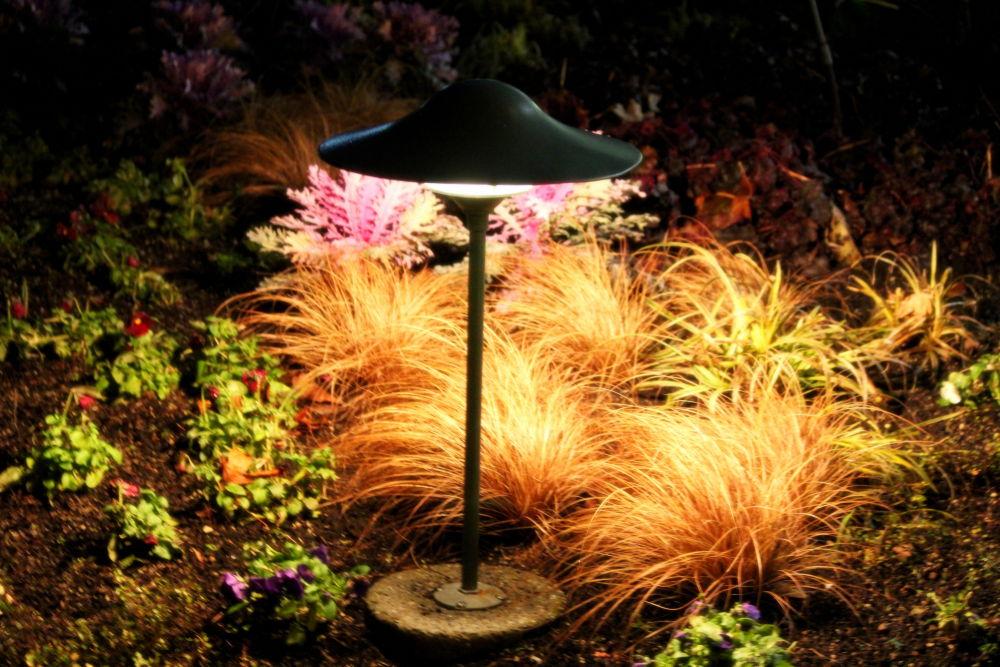 Northwestern Glow by Robbie Isbell