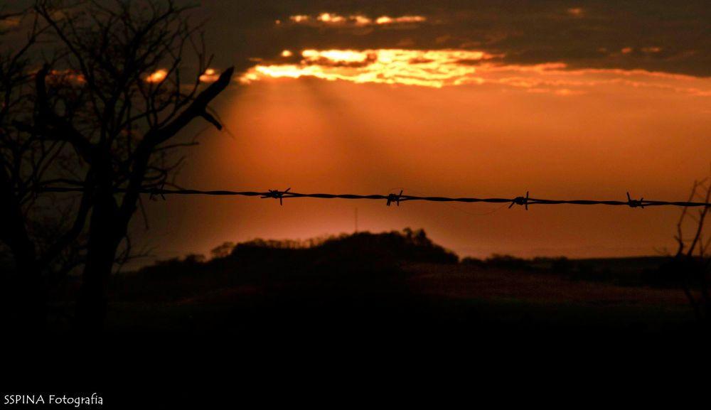 Sunset by Samuel Miranda Spina