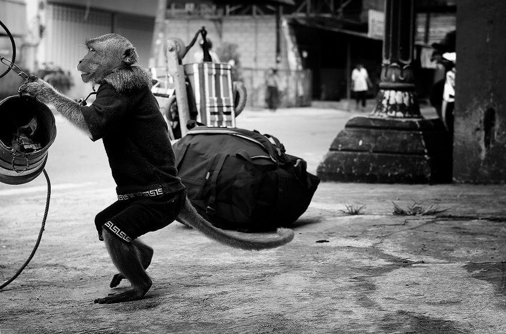 Photo in Black and White #street #pangkalan bun #ferynov