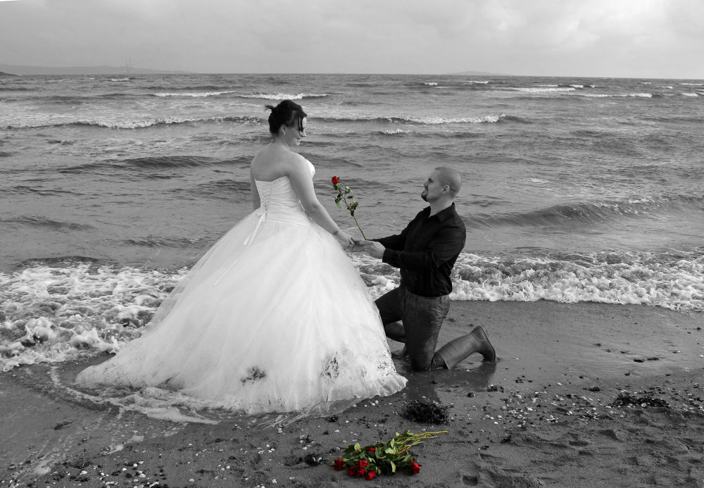 Roses are Red in Rock the Frock by Nicola Whitton Nicechoicephotography