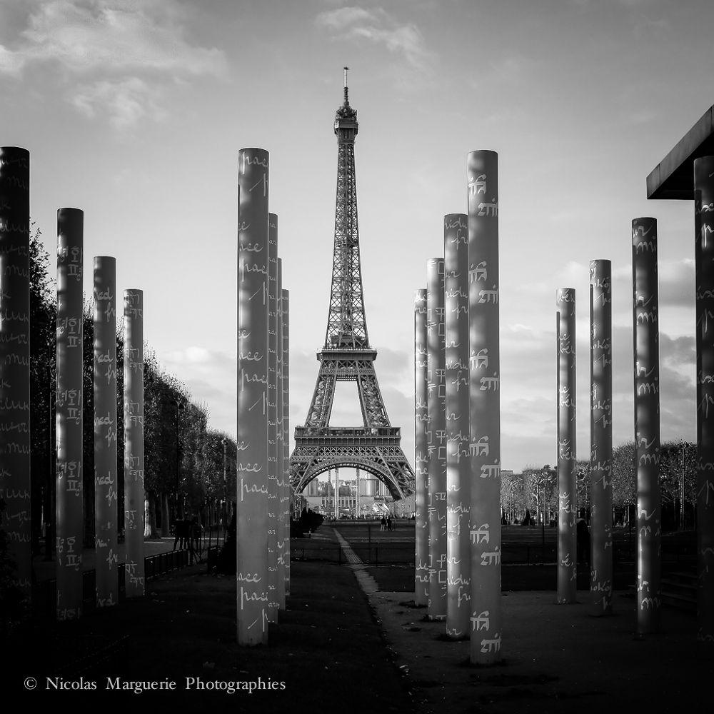 Photo in Cityscape #france #paris #tour eiffel #champ de mars #urbain #urban #architecture #monuments #noir et blanc #black and white #b&w #n&b